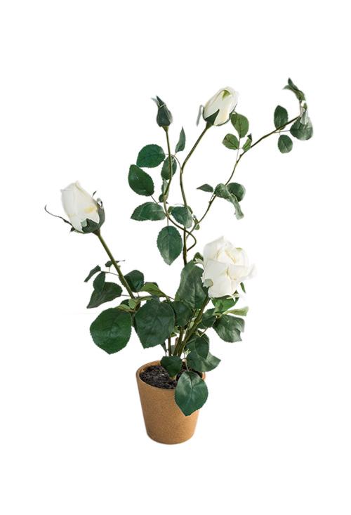 Kwiat-99_22